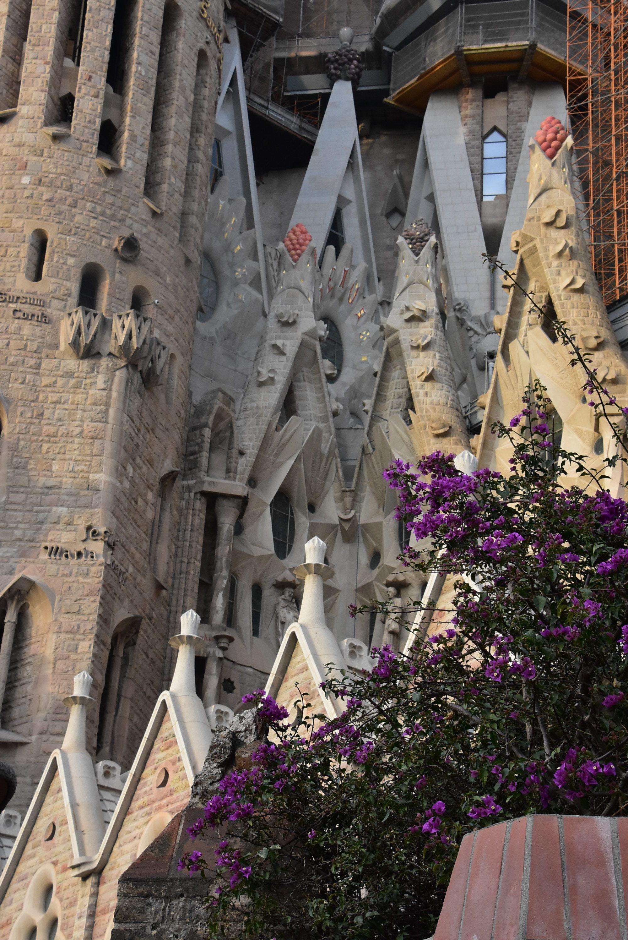 Michael Buss Architect Barcelona Trip Sagrada